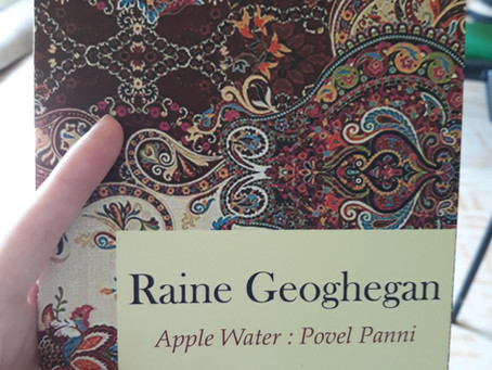 Review: Apple Water: Povel Panni by Raine Geoghegan