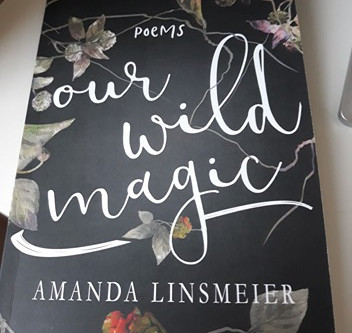 Book Review: Our Wild Magic