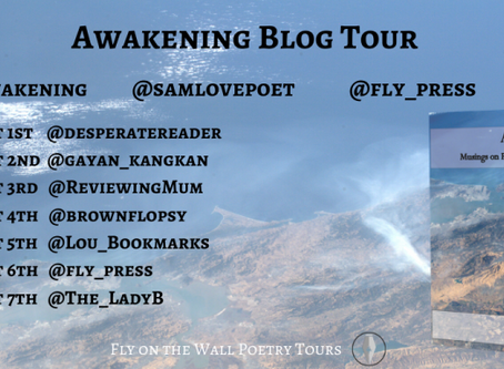 Blog Tour: Sam Love and his collection 'Awakening'