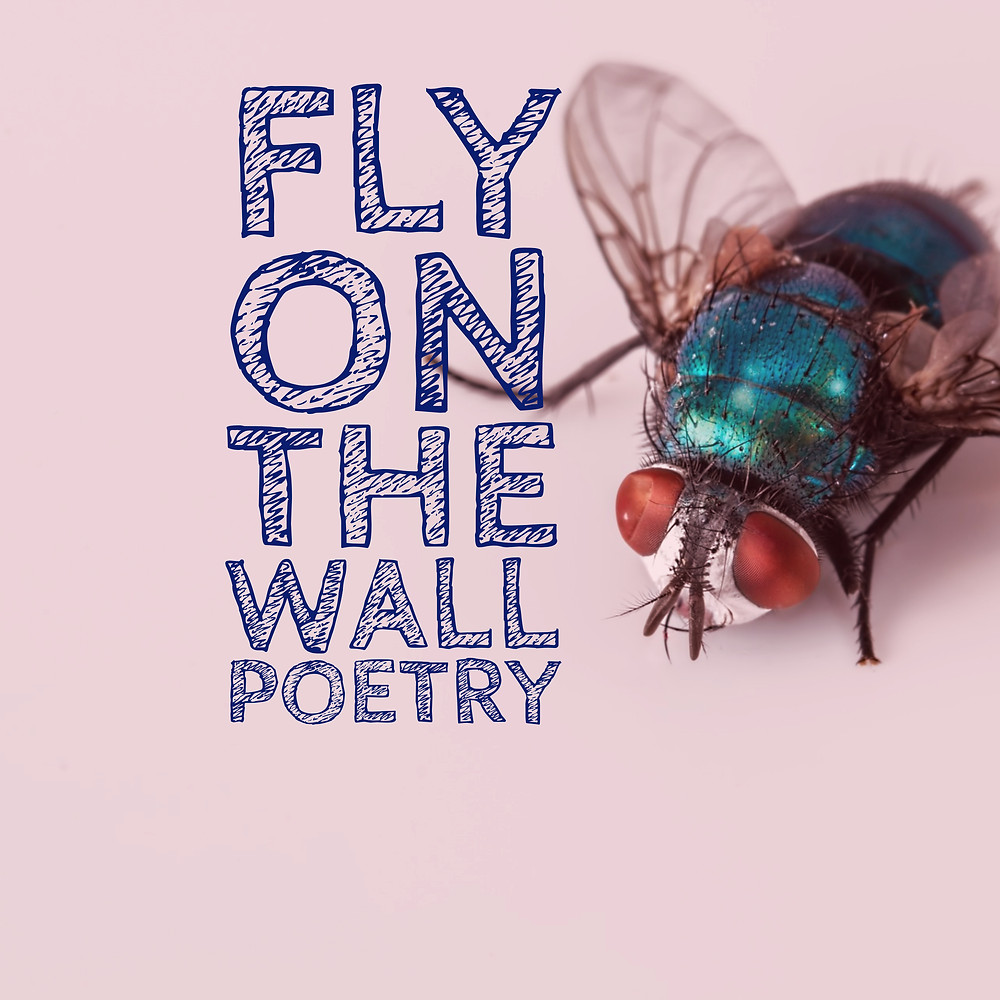 Fly on the Wall Poetry Press
