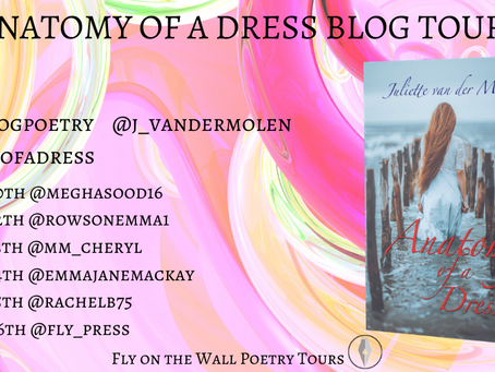 Blog Tour: Anatomy of a Dress by Juliette van der Molen