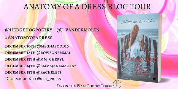 Anatomy of a Dress Blog Tour.png