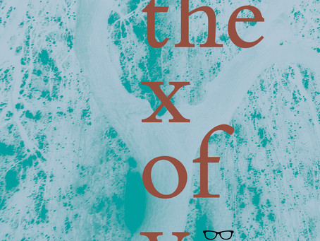 Poetry Review: the x of y
