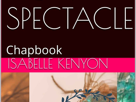 New Review: This is not a Spectacle (Kindle Edition)
