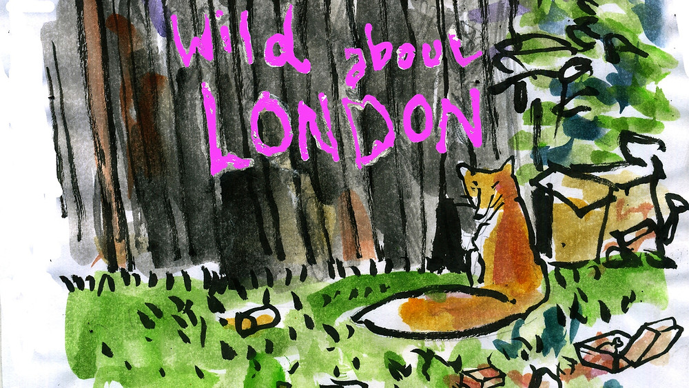 Wild About London Book