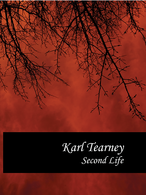 Hardback: Second Life by Karl Tearney
