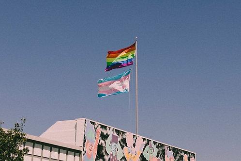 Pride - Postcard