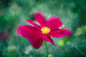 Impressionist Blooms