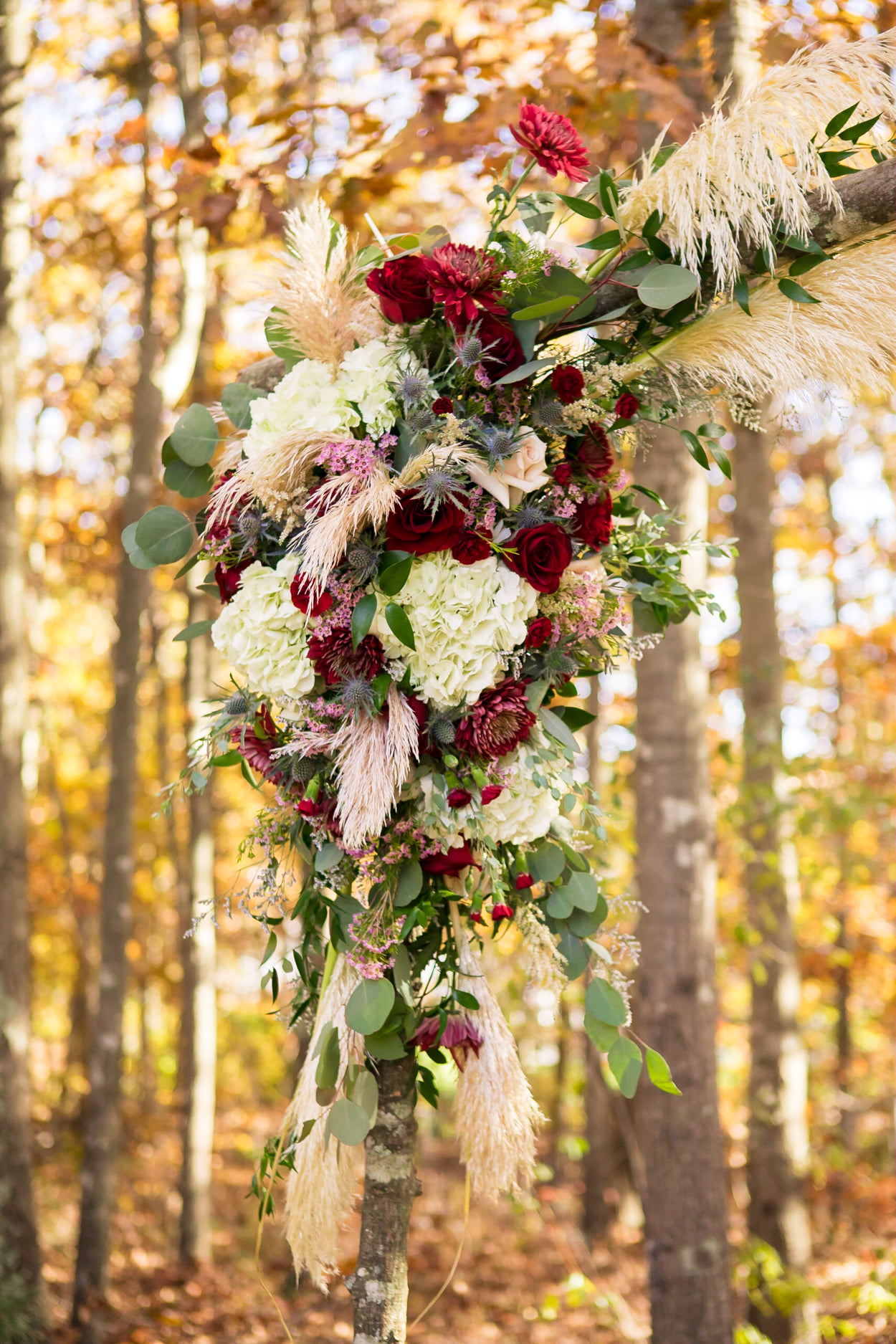 Nicholas Wedding ceremony arch