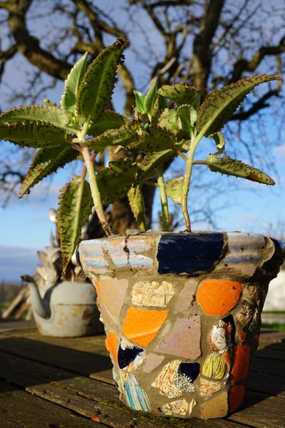 Pot de fleur terre cuite et céramique recyclée