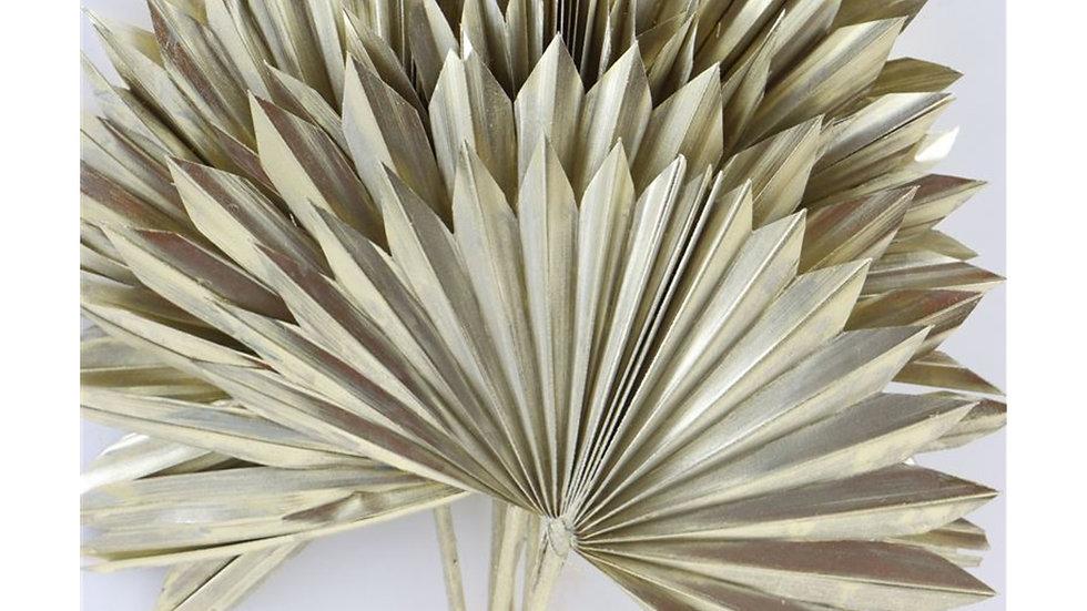 Getrocknete Sonnenspeer, Palmblatt 1x Bund