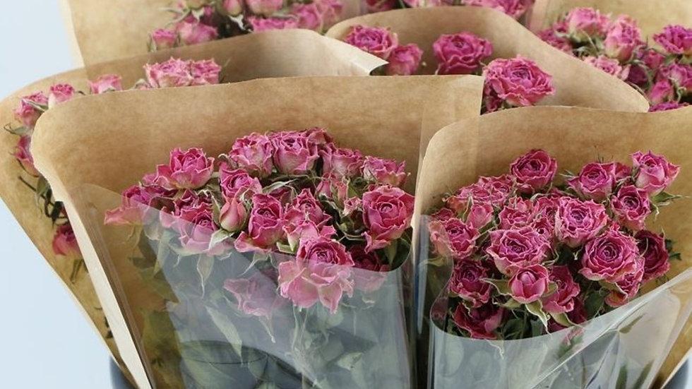 getrocknete Rosen 3 x 10 Stück