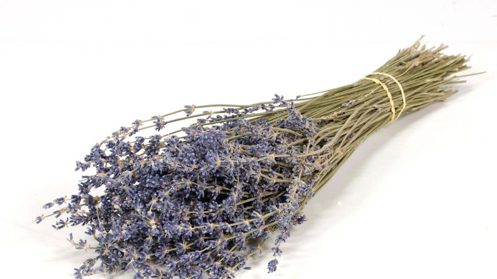 getrockneter Lavendel dunkel-blau 5x Bund