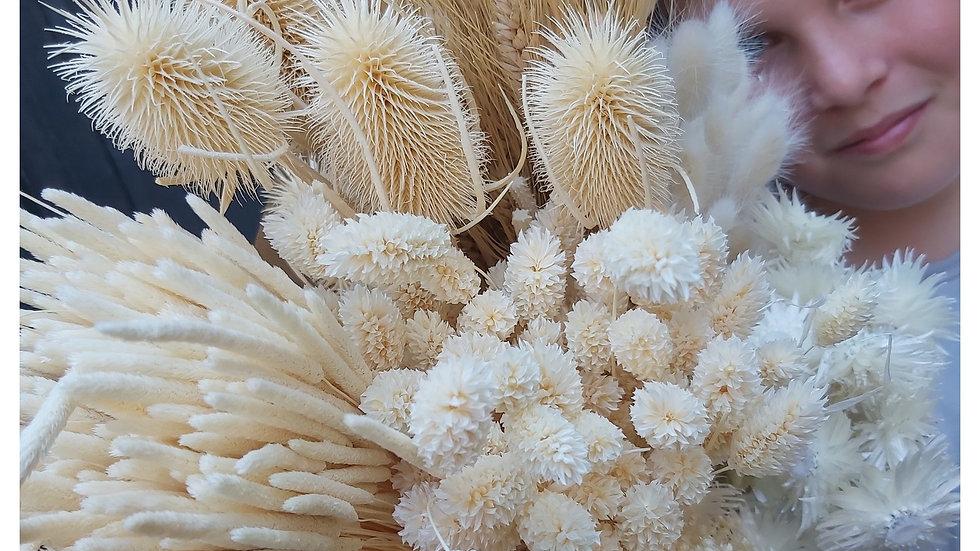 Mischung aus gebleichten Trockenblumen