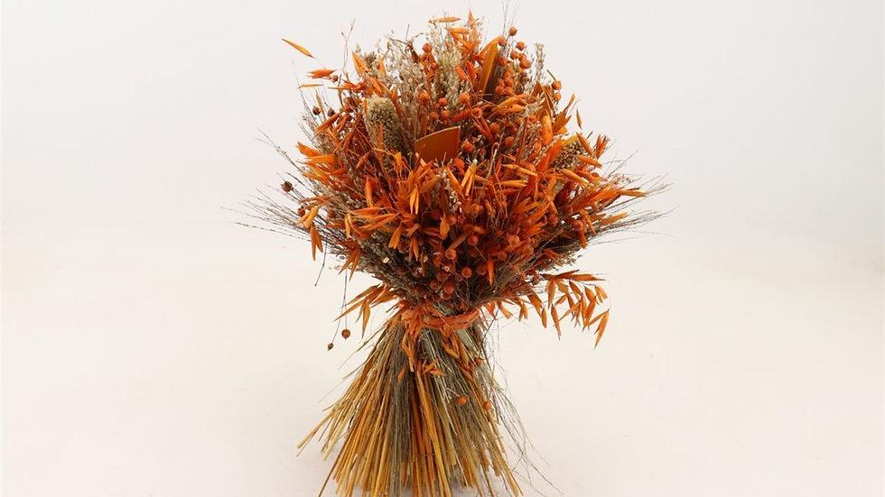getrockneter Blumenstrauß Garbe - 1x Bund - 30cm - Orange