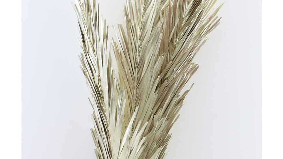 Palmblatt länglich 5x Stück