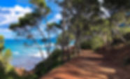 static1.seemallorca.com-image_uploader-p