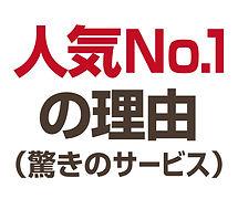 HPボタン_人気No.1の理由.jpg