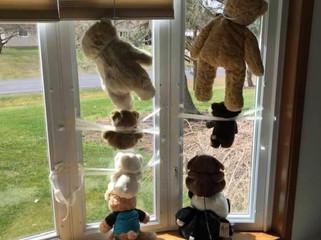 Teddy Bear Innovation