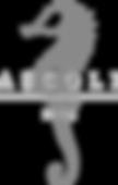 Ascoli1908 logo