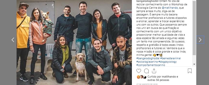 cursopsicologiacanina-instagrambangalôdoghostel.png