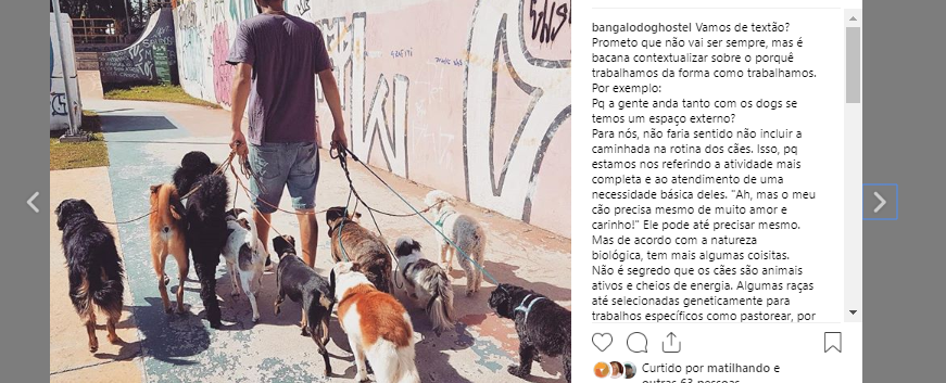 passeiomatilha-instagrambangalôdoghostel.png