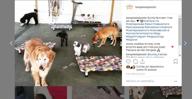 daycareeducativo-instagrambangalôdoghostel.png