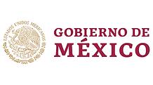 Gobierno_mx.png