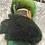 Thumbnail: Hand dyed Finnsheep Batt 139
