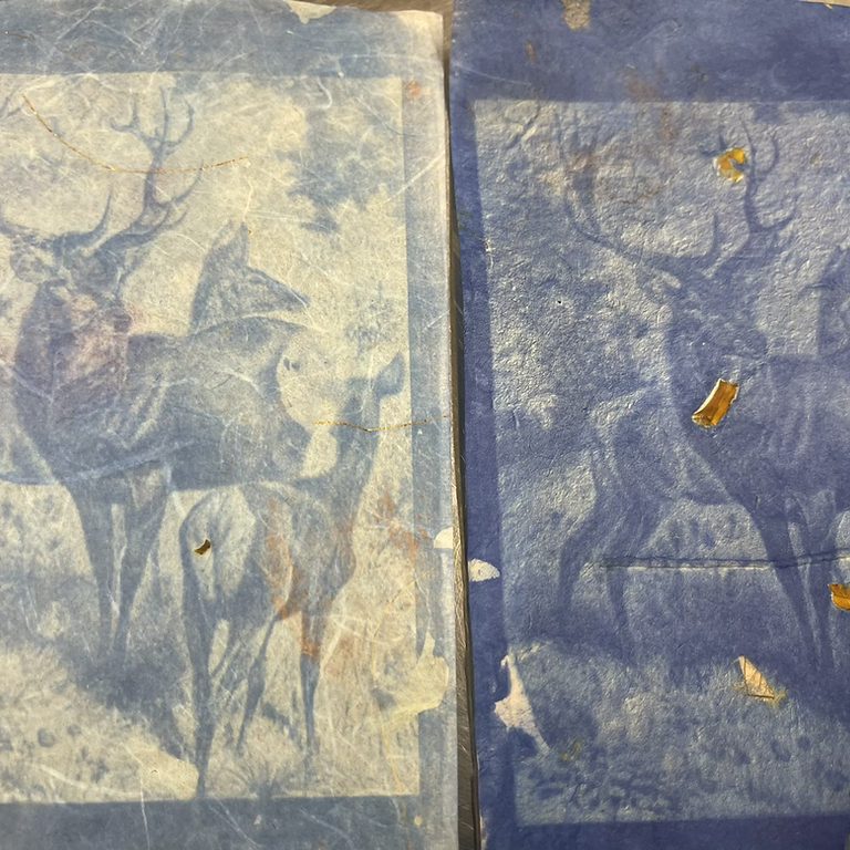 Cyanotype Printing on Paper and Fabric
