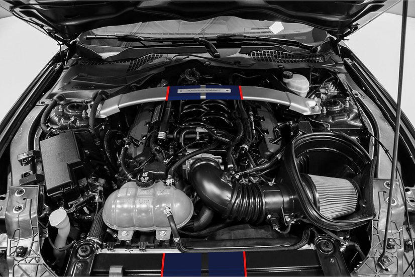 GT350 & GT350R Engine Bay Stripe Kit