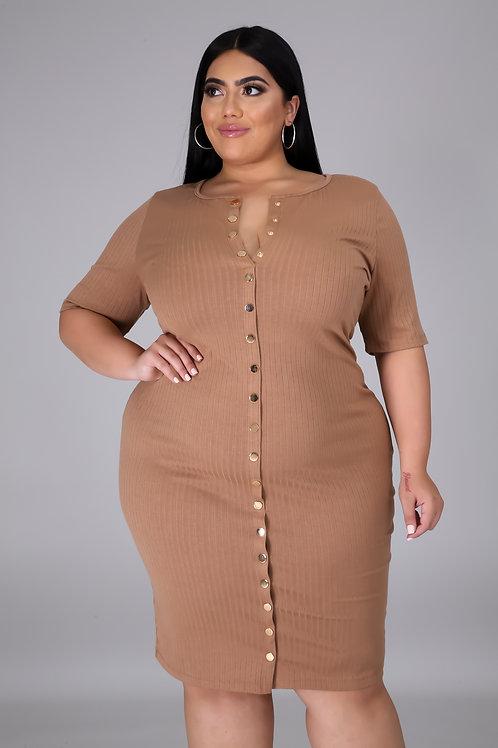 Plus Size Button Up Dress