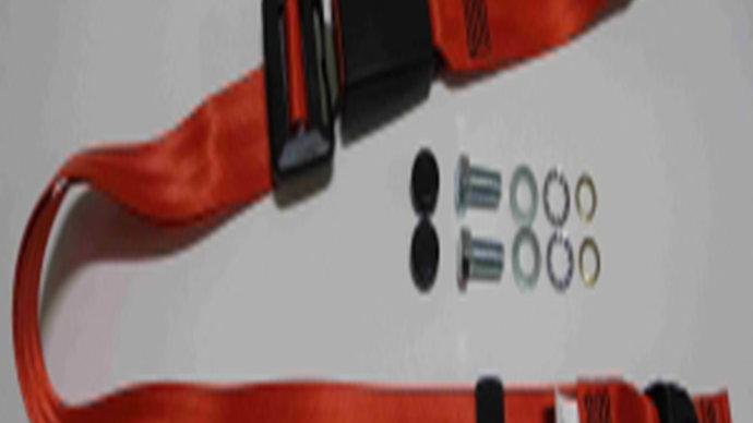 Statischer Beckengurt,rot,30cm Bandschloss für W114/W115