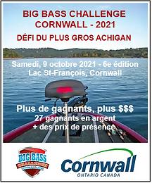 2021 Poster Cornwall.png