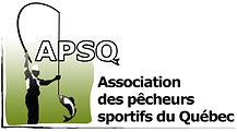 APSQ #3.png
