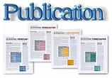 publication 2.png