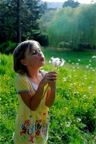 Nurturing Love and Reverence for Nature with Our Children