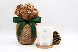 Eco-Friendly Christmas Gift Idea