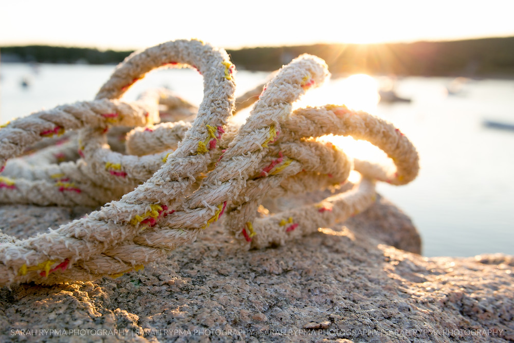 Rope on a rock in Seal Harbor