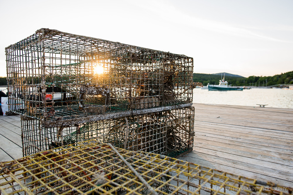 Lobster trap on docks at sunset