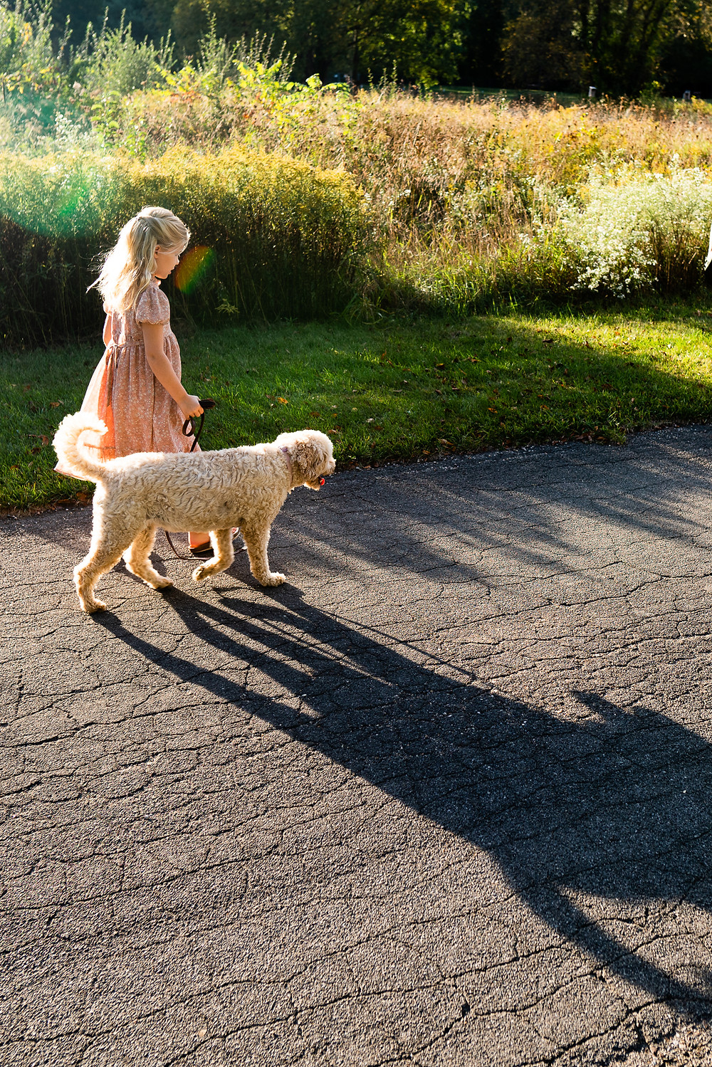 Young girl wearing a dress walking her dog outdoors