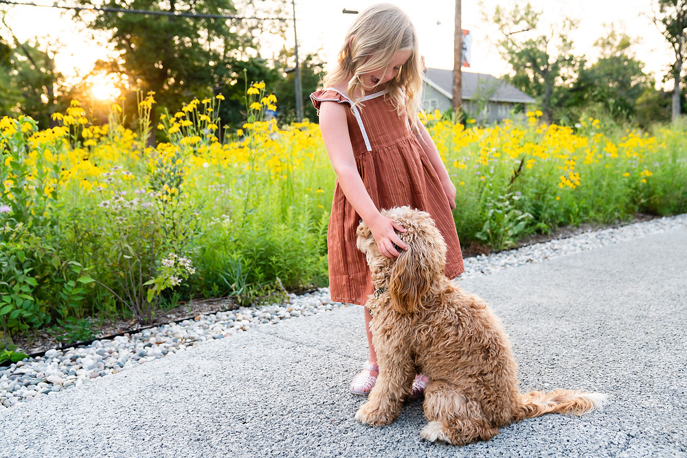 Young girl petting her dog outside with flowers in the background