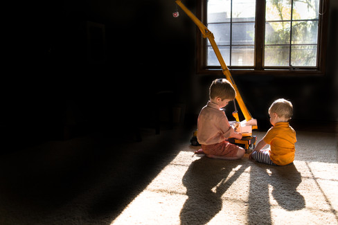 Brothers Play with Crane