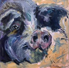 Happy Hog Day
