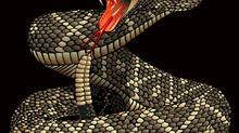 """NEW ALBUM: """"Rattlesnake Love"""""""