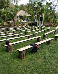 Tree stump bench seats