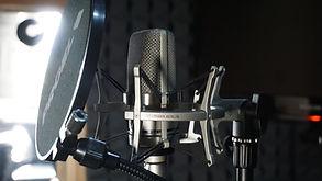 Unbeatable Records - mikrofon Neumann TLM 102