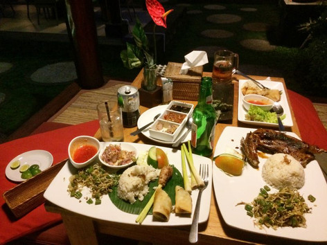An overview of our first meal