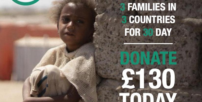 Feed 3 (Syria, Gaza & Yemen)