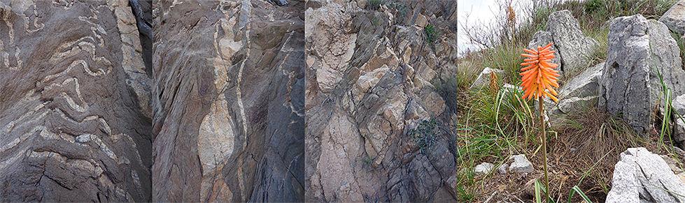 Quartz-4-images.jpg